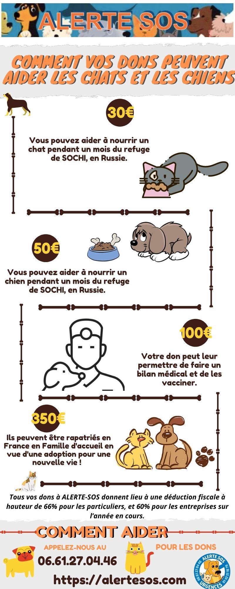 Animal Association caritative Infographie